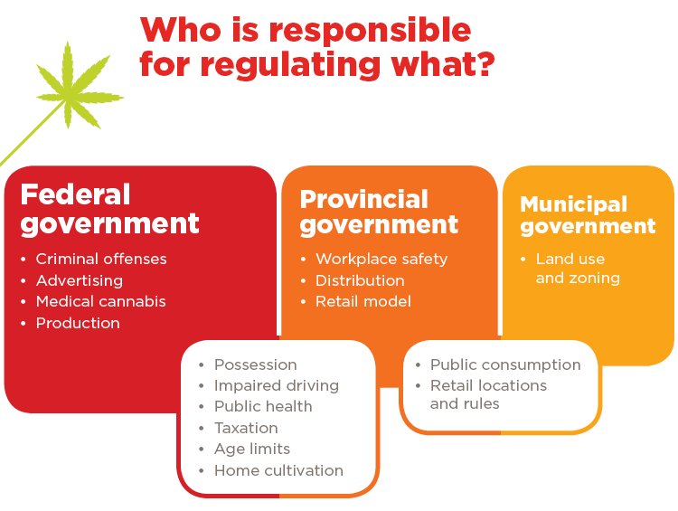 infographic highlighting the different government sector and what they regulate in terms of cannabis