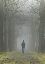 photo a person walking down a gloomy path in the woods